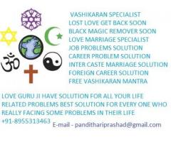 8955313463 get back your lost love soon delhi