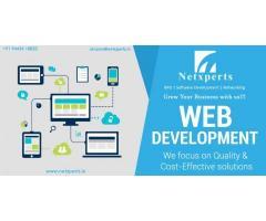 Netxperts- software development in tirunelveli